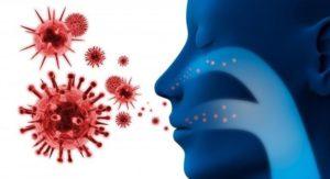 Коронавирус: признаки, лечение, пути передачи, инкубационный период у человека, профилактика