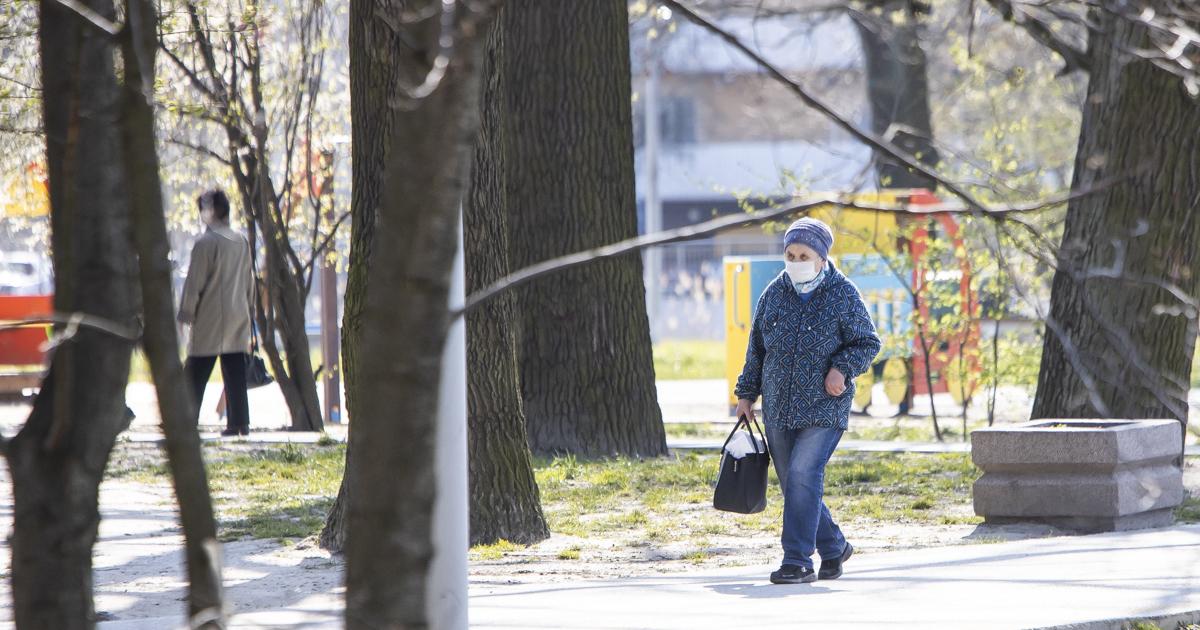 Коронавирус в Калининградской области: последние новости, сколько заболевших
