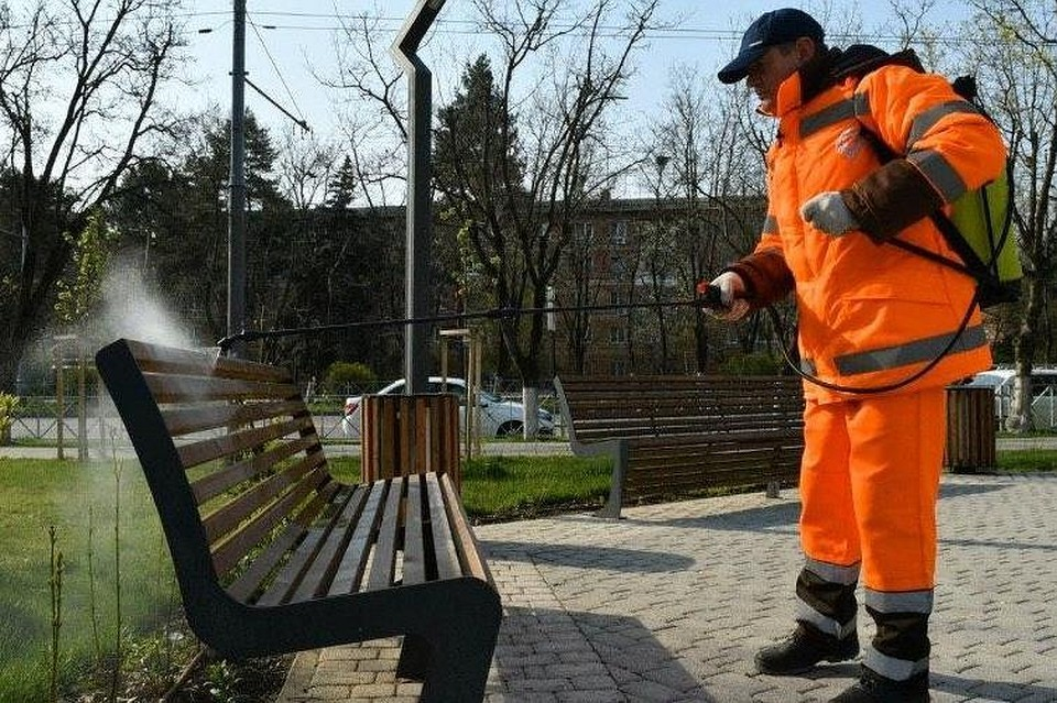 Коронавирус в Краснодаре: сколько зараженных, новости